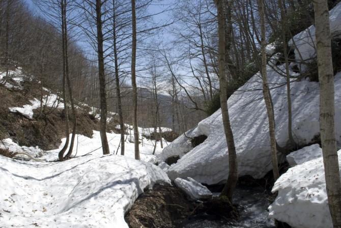 터키의 레서 코카서스 산(해발 822m)에 눈이 쌓인 모습. 2060년에는 이 풍경을 볼 수 없을지도 모른다 - 다리오 마틴-베니토 컬럼비아대 지구연구소 연구원 제공